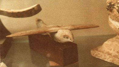 A photograph of the Saqqara bird. Image Credit: Wikimedia Commons / Public domain.