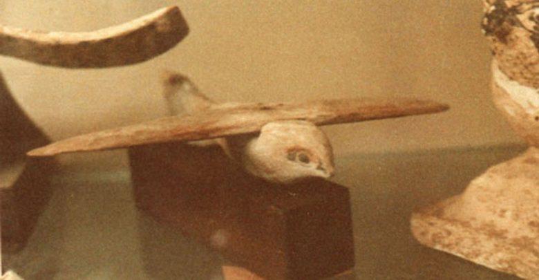 A photograph of the Saqqara bird. Image Credit: Wikimedia Commons / Public domain.