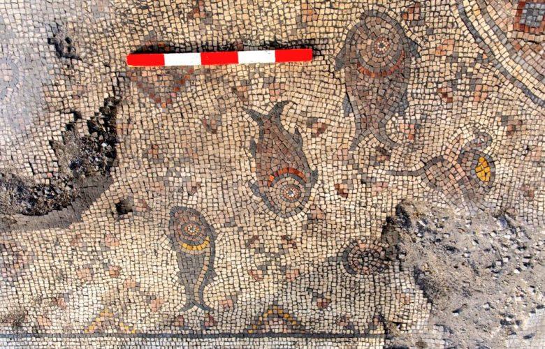 The new Mosaic Floor at Hippos. Image: © University of Haifa