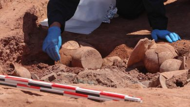 Photo of Archaeologists Make Revealing Discovery at Tiahuanaco; Here Are 7 Striking Images