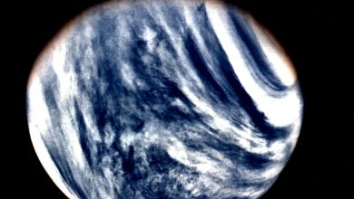 Global View of Venus in ultraviolet light as seen by Mariner 10