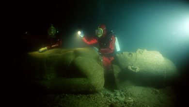 Image showing a diver next to one of the massive statues that now lie submerged in the ancient city of Thonis-Heracleion, at the mouth of the Nile River. Image Credit: Franck Goddio / Hilti Foundation / University of Oxford.