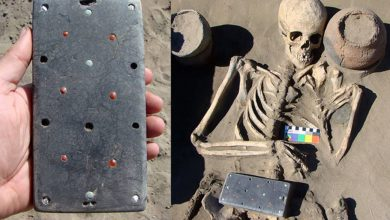 "Photo of Archaeologists Stunned by 2,100-Year-Old ""iPhone-Like"" Belt Buckle Found in Russia's Atlantis"