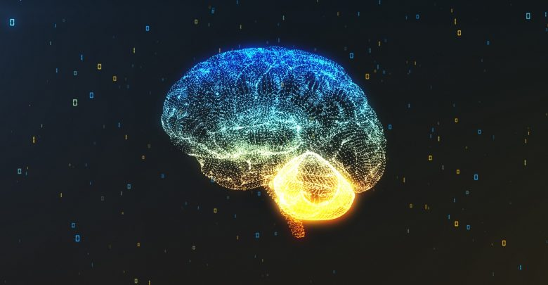 An illustration of a human brain. Shutterstock.