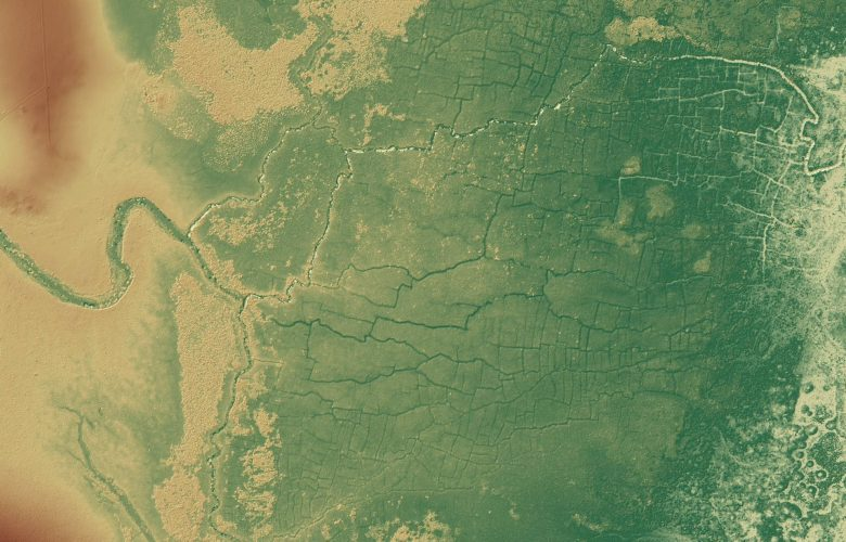 Ancient Maya Wetlands contributed to cliamte change say experts. Image Credit: T Beach et al. University of Texas Austin.