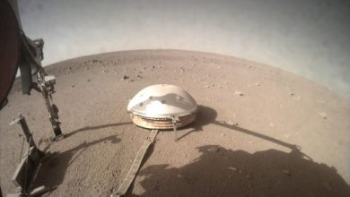 Photo of Here Are 6 Stumping Martian Sounds Recorded y NASA's InSight Lander on Mars