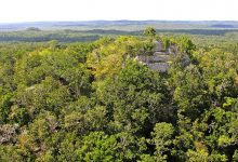 Photo of La Danta: One of the Largest Pyramids on Earth is Hidden Beneath the Forest