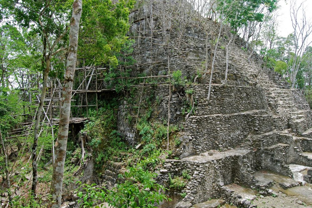 A smaller pyramid at El Mirador is seen surrounded by forest in this image. Image Credit: Geoff Gallice from Gainesville [CC BY 2.0]