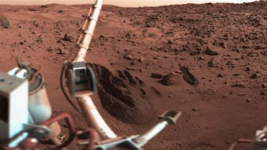 Photo of Former NASA Scientist Claims We've Found Life on Mars Decades Ago