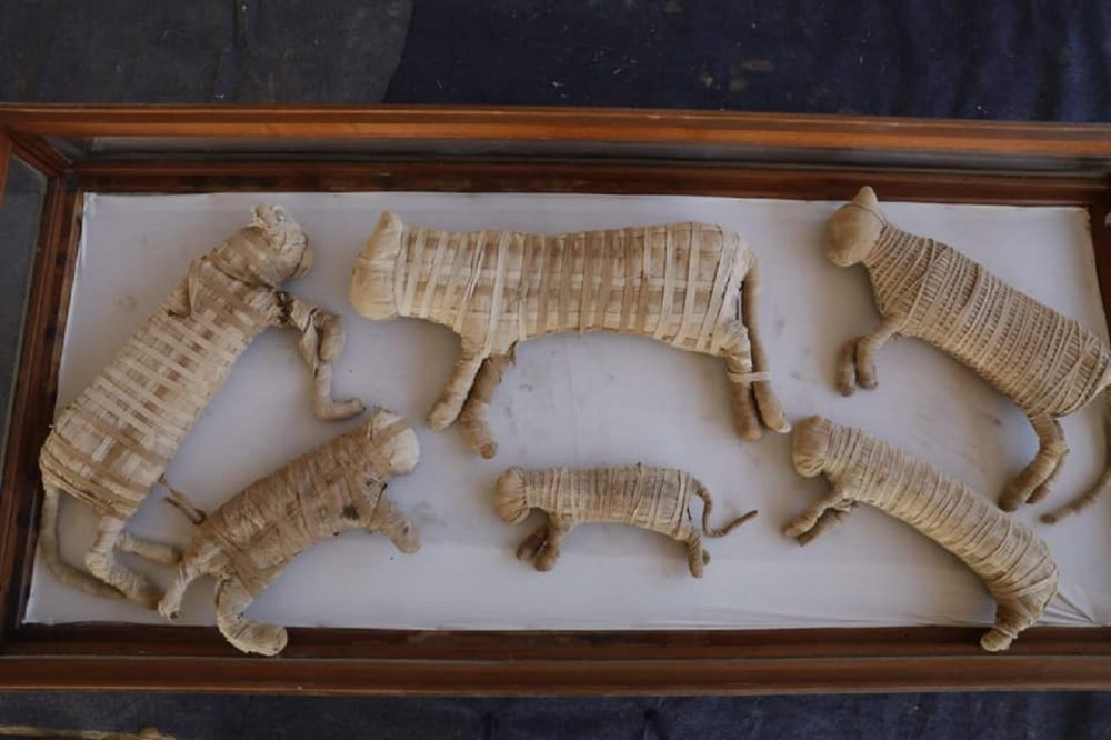 An image of the mummified cats discovered by archaeologists at Saqqara. Image Credit: Egyptian Ministry of Antiquities / Facebook.