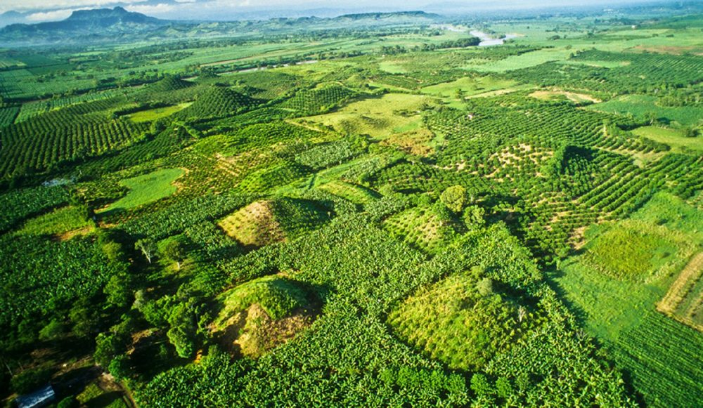Aerial view of some of the buried pyramids of El Pital. Pinterest.
