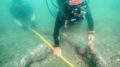 Photo of Anchors Belonging to Ships of Hernan Cortes Likely Found Off The Coast of Mexico