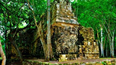 Photo of Striking Ancient Maya Palace Discovered in the Heart of the Yucatan