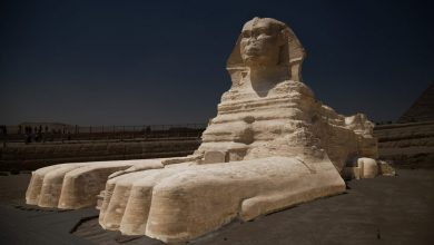 Photo of 3 Striking Reasons Why We Still Don't Know The Exact Age of the Great Sphinx