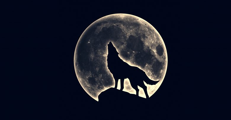 Photo of Wolf Moon: January 10 Full Moon Comes With This Year's First Eclipse