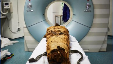 An image of Nesyamun's mummified body before a CT scan. Image Credit: Leeds Teaching Hospitals/Leeds Museums and Galleries.