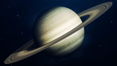 An artists rendering of gas giant Saturn. Shutterstock.