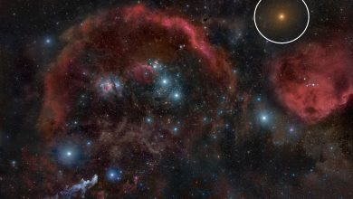 An image showing Betelgeuse (upper right) and the dense nebulae of the Orion Molecular Cloud Complex. Image Credit: Wikimedia Commons / CC BY-SA 3.0.