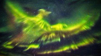 Photo of 4 Striking Aurora Borealis Photographs You Have to See
