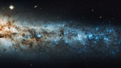 "An image of the image of the ""Whale Galaxy"" (NGC 4631). Shutterstock."