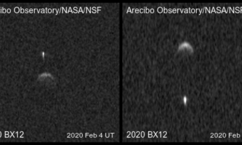 Range-Doppler radar images of binary near-Earth asteroid 2020 BX12. Image Credit: Arecibo Observatory / Planetary Radar Science Group.