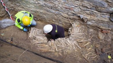 "Photo of Archaeologist Stunned by ""Walls of Human Bones"" Beneath Cathedral"
