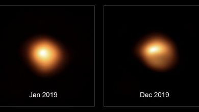 Photo of Betelgeuse Probably Isn't Going to Explode Soon, and Here's How We Know