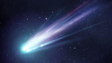 "Photo of Clues on Alien Life: Scientists Find Unprecedented ""Alien"" Protein Inside Meteor"
