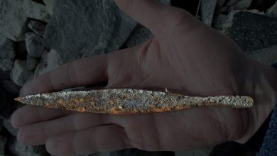 Photo of 1,500-Year-Old Viking Arrowhead Found After Glacier Melts in Norway