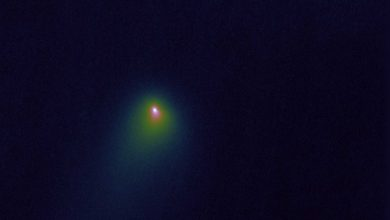 "Photo of Astronomers Spot ""Explosions"" On Interstellar Comet 2I/Borisov"