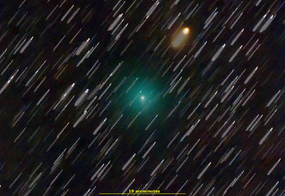 An image of comet C/2019 Y4 ATLAS on February 29th 2020. The Photograph was taken by Makioka, Jamanashi, Japan. Source: Spaceweather.com.