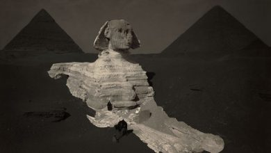Photo of Unwritten Mystery: Why The Great Sphinx is Absent From Egypt's Ancient Records