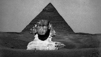 Photo of 7 Rare Images of the Great Sphinx That Show How Incredibly Ancient It Really Is