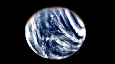 "Photo of Long-Held Idea About Venus' Atmosphere Upended Thanks to ""Lucky"" Data"