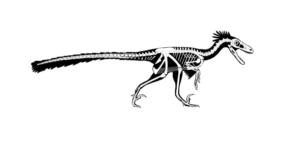 An image of what the new dinosaur looked like. Image Credit: Steven Jasinski.