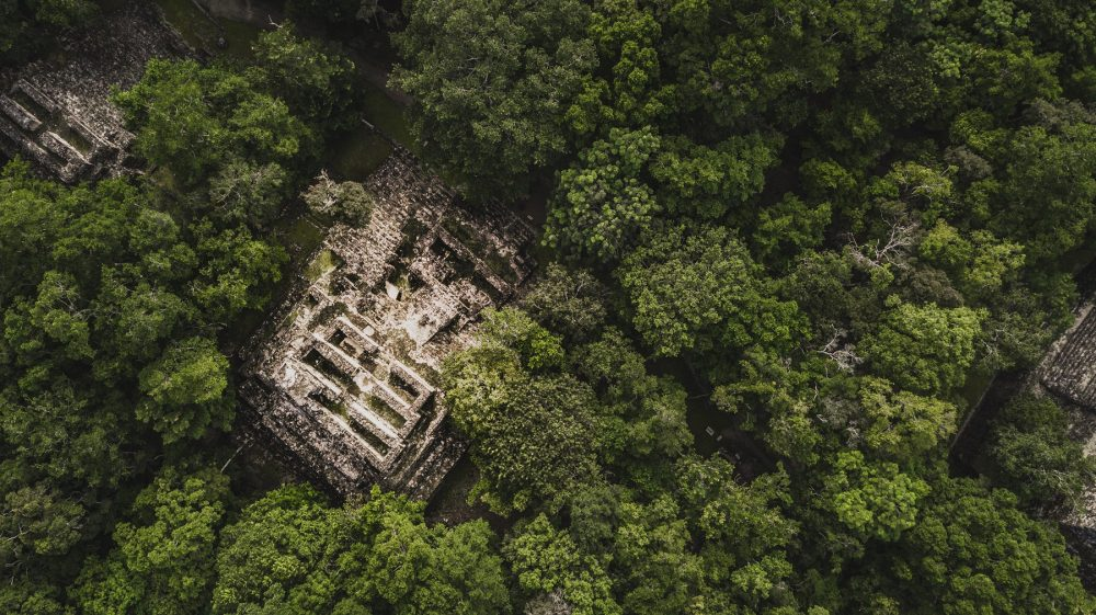 Aerial view of the pyramids at Calakmul. Shutterstock.