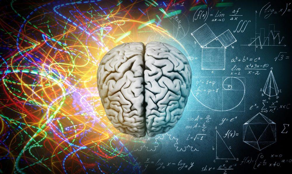 An artist's illustration of the human brain and art. Shutterstock.