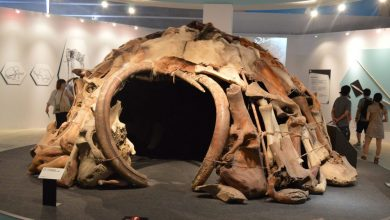 Photo of Check Out This Striking 25,000-Year-Old Hut Built Out of Mammoth Bones