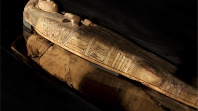 Photo of Scientists Make Stunning Discovery Inside 3,000-Year-Old Ancient Egyptian Sarcophagus