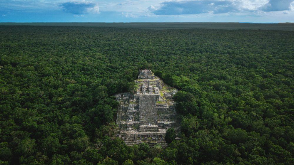 An aerial image of the Pyramid of Calakmul rising above the dense rain-forest beneath. Shutterstock.