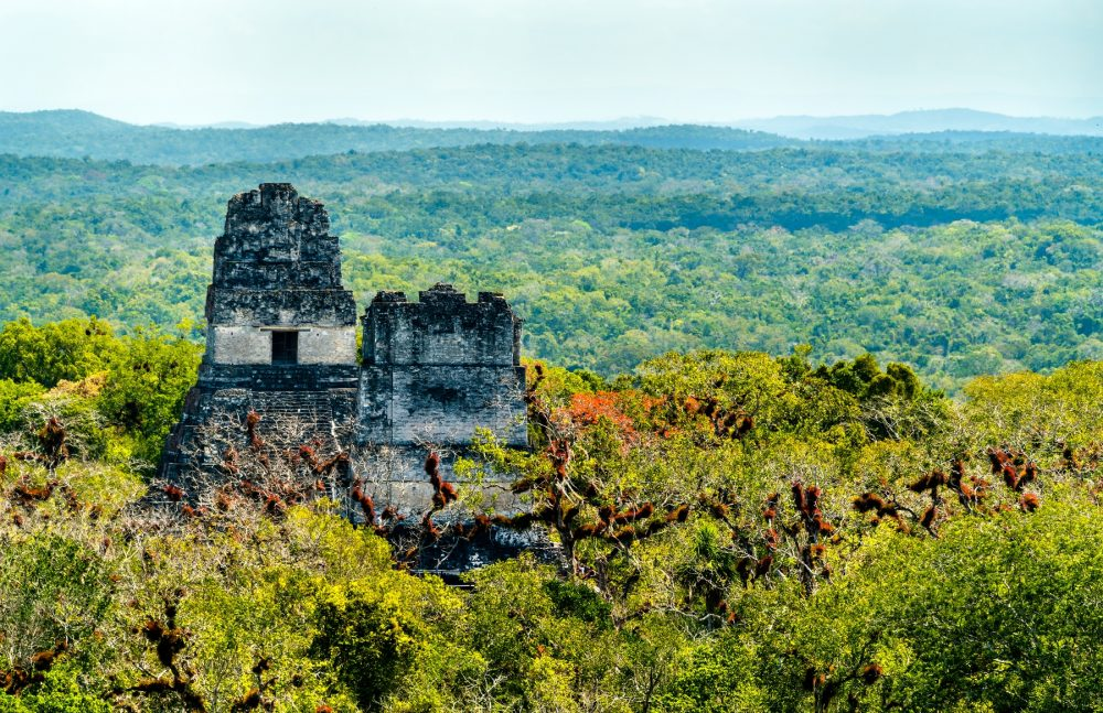 A view of the Pyramids of Tikal. Shutterstock.