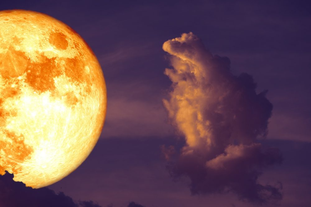 A bright super Moon among the clouds. Shutterstock.