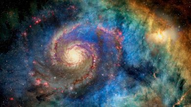 An image of a spiral galaxy. Shutterstock.