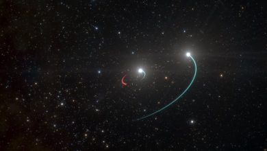 Photo of Astronomers Find Black Hole In a Star System You Can See With The Naked Eye