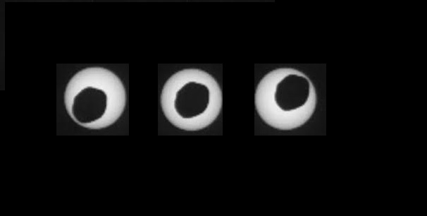Annular eclipse of the Sun by Phobos (Curiosity, August 20, 2013). Image Credit: Curiosity Rover / NASA.