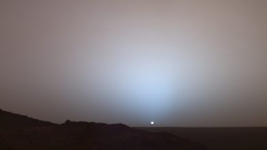 Photo of NASA's InSight Lander Spots Solar Eclipse on Mars: Here's What it Saw