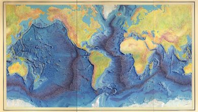 Map of Marie Tharp and Bruce Heezen, painted by Heinrich C. Berann (1977), showing the relief of the ocean floors with the system of mid-ocean ridges. Image Credit: Wikimedia Commons.