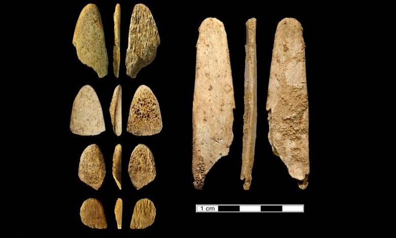 An image of the ancient tools analysed by researchers. Image Credit: UC Davis.
