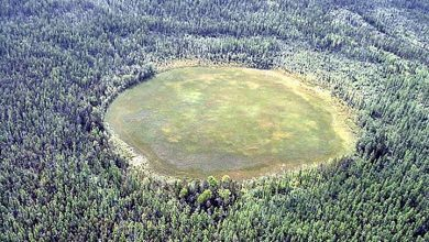 Photo of Tunguska: Have Scientists Finally Explained What Caused the World's Largest Explosion?