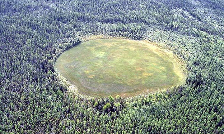 The site of the Tunguska event as it's seen now. Image Credit: Fedor Daryin / The Siberian Times.